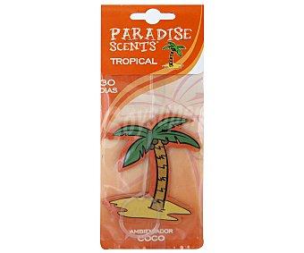PARADISE SCENTS Ambientador de Coche Fabricado en Celulosa para Colgar, con Forma Palmera y con olor a Coco 1 Unidad