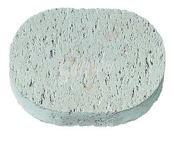 Beter Piedra pomez