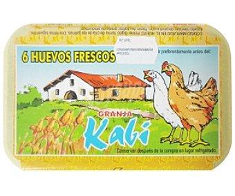 AVIC. TOLOSA Huevos Clase XL 6 Unidades