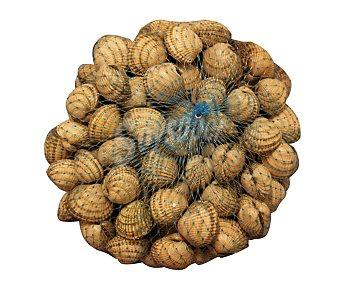 Berberechos pequeños 1000 Gramos