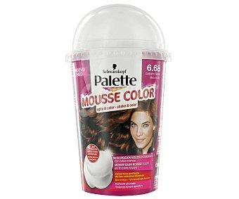 Palette Schwarzkopf Tinte Castaño Rojizo Nº6.68 Mousse Color 1u