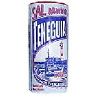 TENEGUIA sal marina fina envase 250 g Envase 250 g