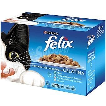 Felix Purina Para gato selección de pescados en gelatina bolsa 100 g Caja 12 unidades
