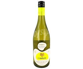 Natura Vino Blanco Natural Ecológico del Penedes Botella 75 Centilitros