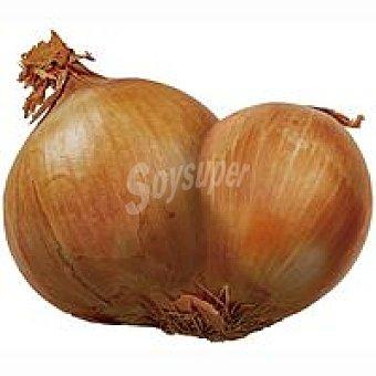Cebolla diferente 1 kg