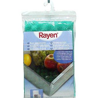 Rayen Almohadilla conservante para frigorífico Paquete 1 unidad