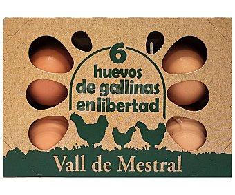 Vall de mestral Huevos de diferentes calibres de gallinas en libertad 6 uds