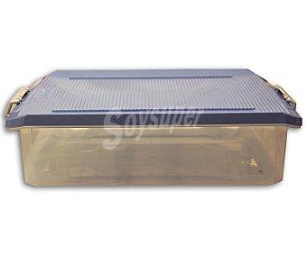 Tatay Bajo cama multiúsos, con capacidad de 32 litros y fabricado en plástico de color azul lavanda 1 Unidad