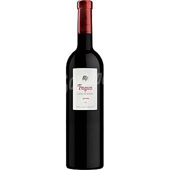 Fagus Vino tinto garnacha de la tierra Campo de Borja  botella 75 cl