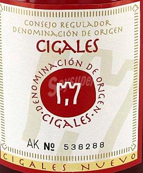 Viña Calderona Vino Rosado Cigales Botella 75 Centilitros