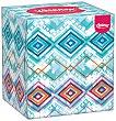Pañuelos collection 2 capas Caja 56 ud Kleenex