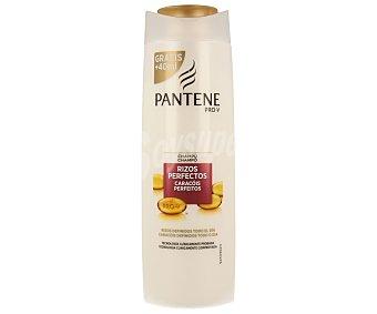 Pantene Pro-v Champú rizos perfectos Bote de 400 ml