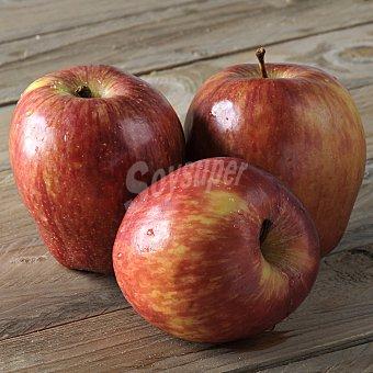 Manzana roja a granel Bolsa de 1000.0 g.