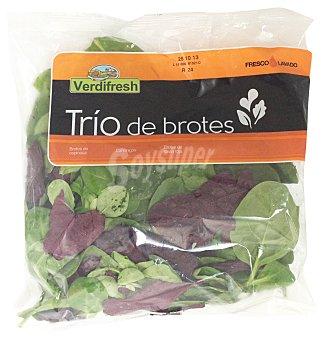 Verdifresh Ensalada trio de brotes (espinacas, canonigos y salvia roja) Bolsa 120 g
