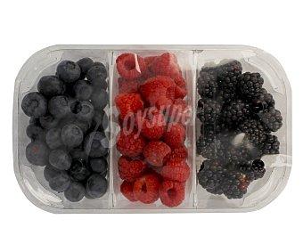 Fruta Surtido de frutos rojos, tarrina 300 gramos