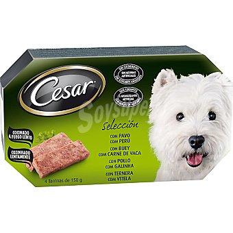 Selección de carnes para perro Pack 4 tarrina 150 g