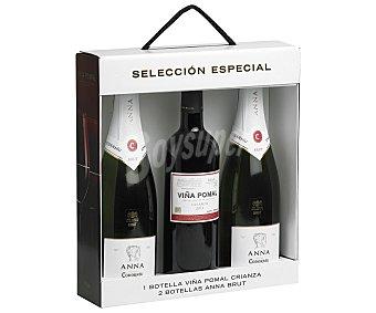 Anna de Codorníu Estuche 2 botellas de Cava brut 75 centilitros + 1 botella
