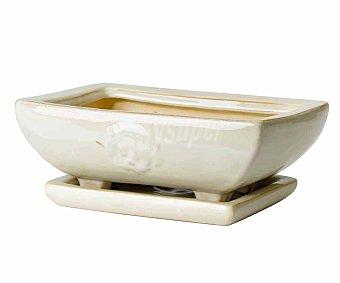 Fansa Jardinera de cerámica rectangular, decorada, en color crema y con plato incorporado Bonsai