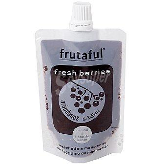 FRUTAFUL zumo pulpa de arándano cosechada a mano en su punto óptimo de maduración  botella 85 g