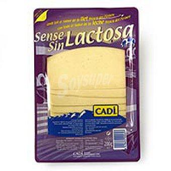 Cadí Cadí Queso lonchas sin lactosa 200g 200g