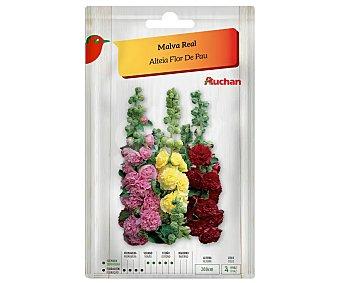 Producto Alcampo Sobre de semillas para plantar malva real de colores variados alcampo