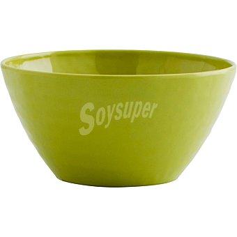 LUMINARC Aqua bol de melamina en color verde 15 cm