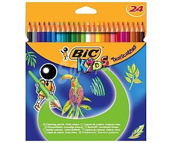 Bic Caja con 24 lápices para colorear, con mina extra dura 1 unidad