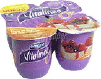 Vitalinea Danone Vitalinea frut-rojos che 4 UNI