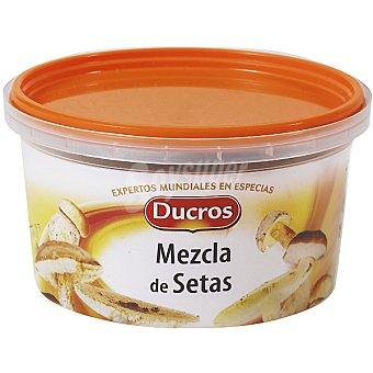 Ducros Mezcla de setas Tarrina 15 g