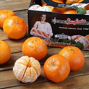 Mandarina Caja de 1,5 kg