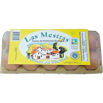 LAS MESTRAS Huevos ecológico L 10 unidades de 63-73 g