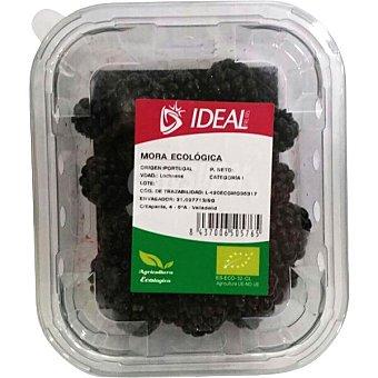 Bionest Moras ecologicas tarrina 125 g
