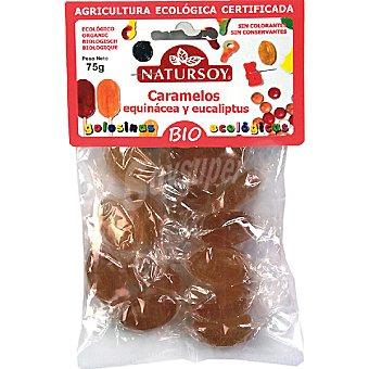 Natursoy bio caramelos equinacea y eucalipto biológicos Bolsa 75 g