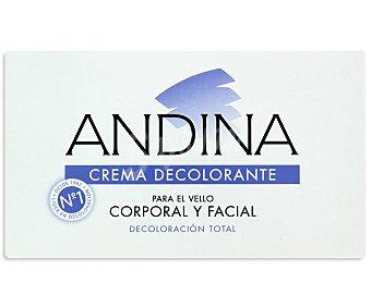 Andina Crema decolorante para el vello corporal y facial Caja 100 ml