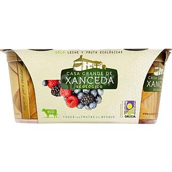 Casa Grande de Xanceda Yogur cremoso con frutas del bosque ecológico Pack 2 unidades 125 g