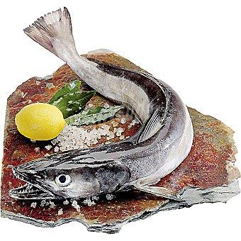 Pescadilla gorda de pincho  2,5 kg (peso aproximado pieza)