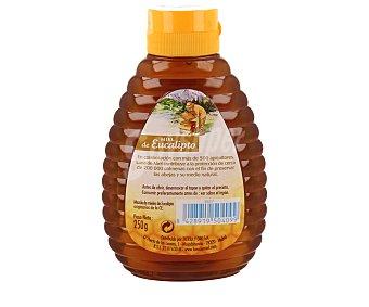Luna de Miel Miel de eucalipto 250 gramos