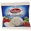 Queso Mozzarella Bolsa 125 g Santa Lucía Galbani
