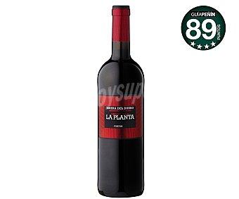 La Planta Vino tinto roble de las Bodegas Arzuaga con denominación de origen Ribera del Duero Botella de 75 centilitros