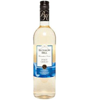 Blossom Hill Vino blanco California Pinot Grigio 75 cl