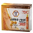 Jalea real adultos vive plus Pack 10 x 10 ml Vive+
