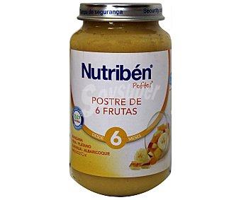 NUTRIBÉN Potito 6 Frutas 250 Gramos