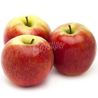 Joya Manzana 1 kg