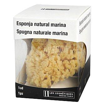 Les Cosmétiques -Les Cosmétiques Esponja Natural marina 1 ud