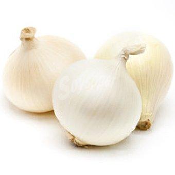 CANTABRIA Cebolla blanca de al peso