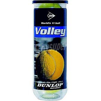 DUNLOP Volley Bote de 3 pelotas de tenis aptas para todas las superficies
