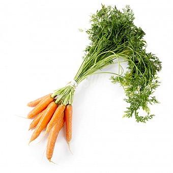 Zanahoria Manojo 750 g