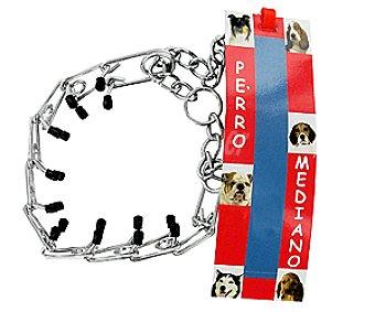 Arppe Collar Castigo para Perro Mediano Ref 12100 1 Unidad