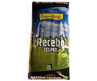 Green plants Saco de 50 litros de sustrato especial para la plantación de cesped, de origen 100% natural plants