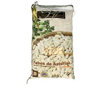 Tierrina vaqueira Fabes asturianas calidad extra 1 kg